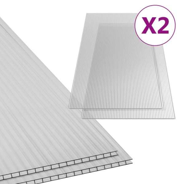 vidaXL Plăci din policarbonat, 2 buc., 150 x 65 cm, 4,5 mm