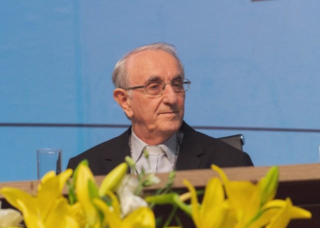 Dom Armando Buciol, no plenário da 57ª Assembleia Geral da CNBB (Foto: CNBB)