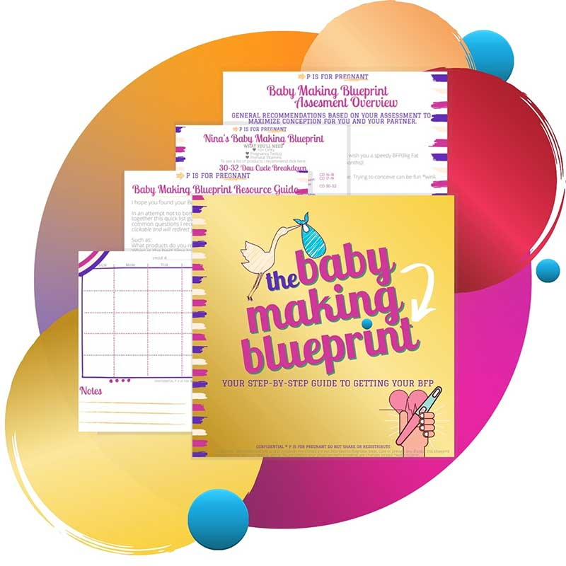 Baby Making Blueprint package with four sheets of paper and a cover photo