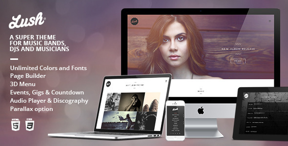 8 Best Wordpress Themes for Musicians 2018 - Pishon Design Studio