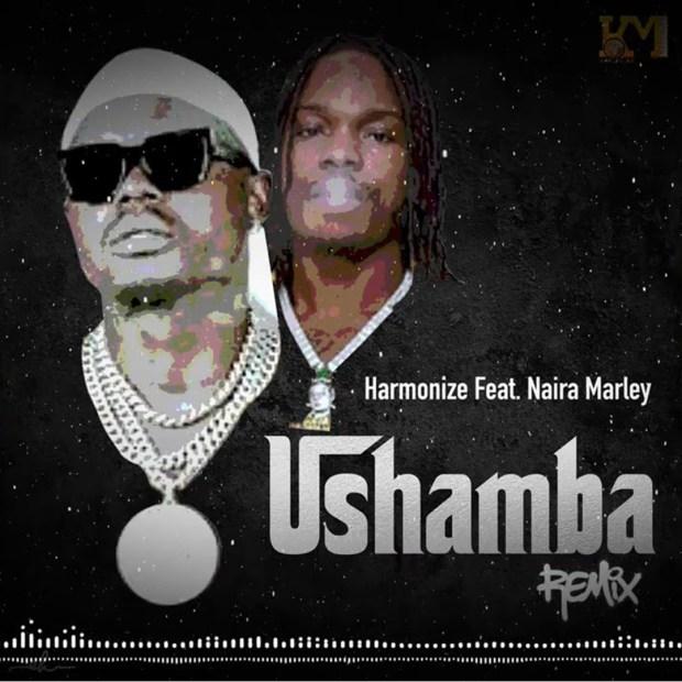 Harmonize Ushamba Remix ft Naira Marley mp3 download