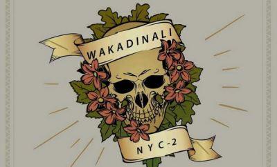 Wakadinali ft Dyana Cods Better Days mp3 download