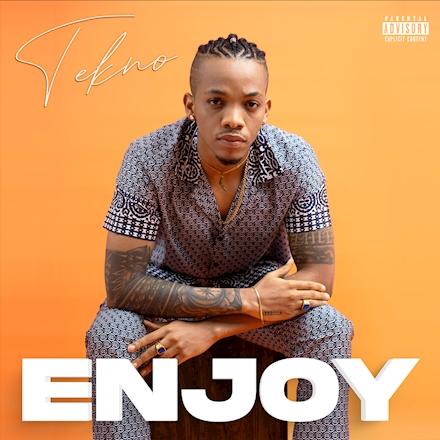 Tekno Enjoy Remix ft Mafikizolo mp3 download