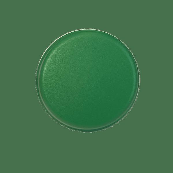6433-0015 bouton à air vert court