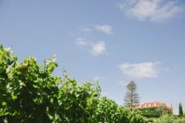 Quinta de SantAna-85