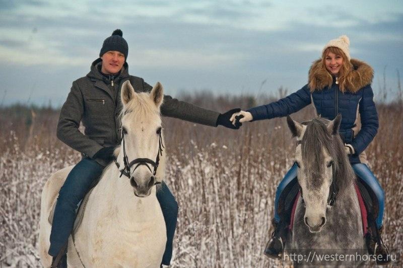 cưỡi ngựa