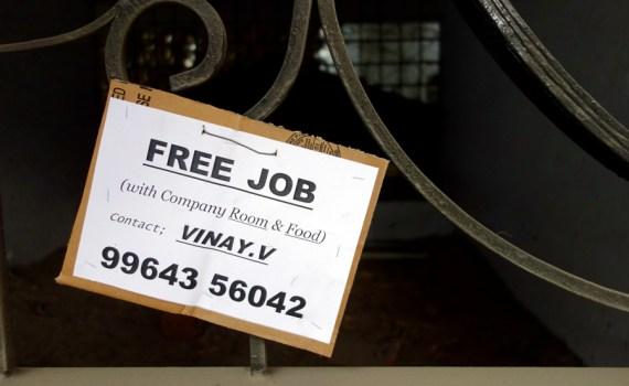 Bengaluru Free Job