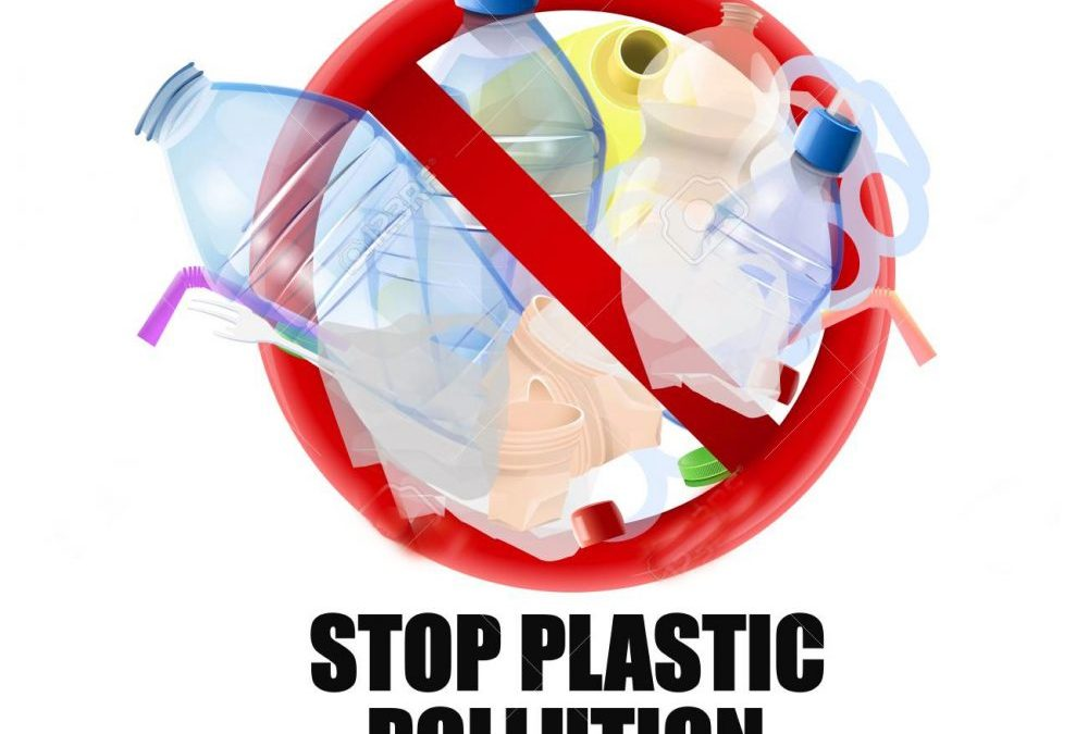 Single Use Plastic, Will You Please GO NOW!