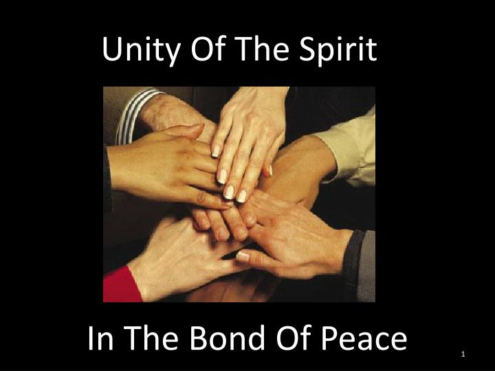 Seeking Holy Unity of the Spirit
