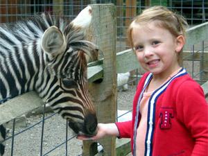 Best Birthday Party Spots Around Pittsburgh For Animal Loving Kids Cbs Pittsburgh