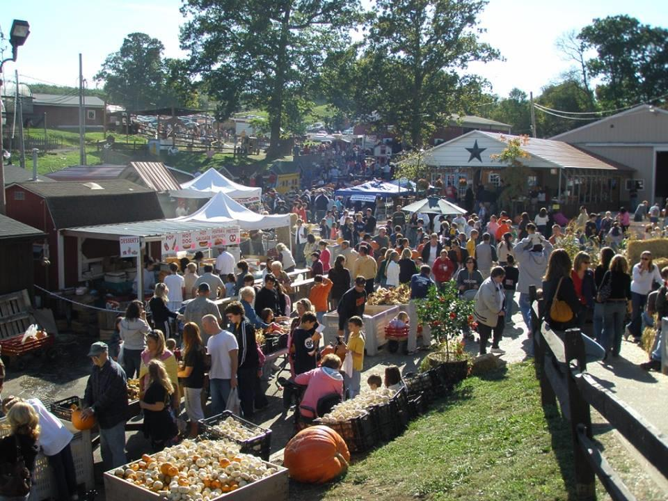 Fall Festivals around Pittsburgh
