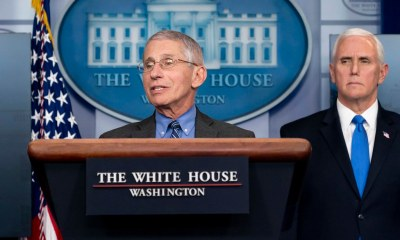 Dr. Fauci coronavirus update NHL return to play scenario (Official White House Photo by D. Myles Cullen)