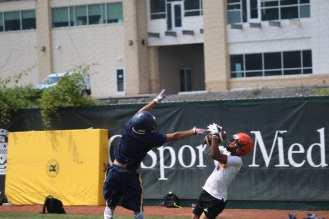 The Catch #2
