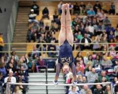 Katie Chamberlain Pitt Gymnastics January 12, 2019 -- David Hague/PSN