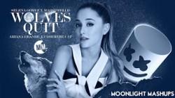 Lyrics Wolves (feat. Marshmello) – Selena Gomez