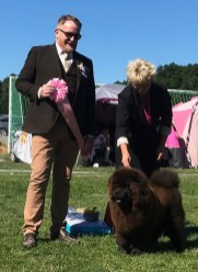 Best Puppy & BIS Puppy - Borås/Sweden 2018
