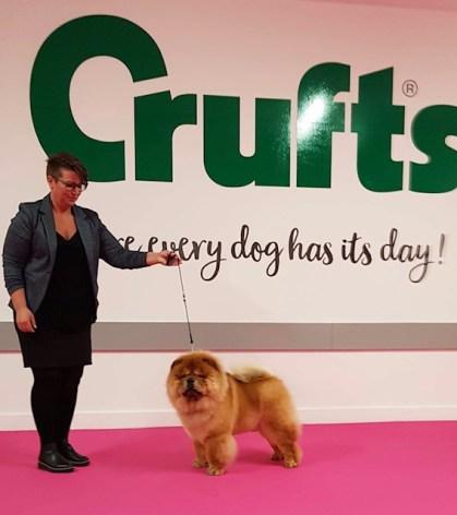 Crufts 2019
