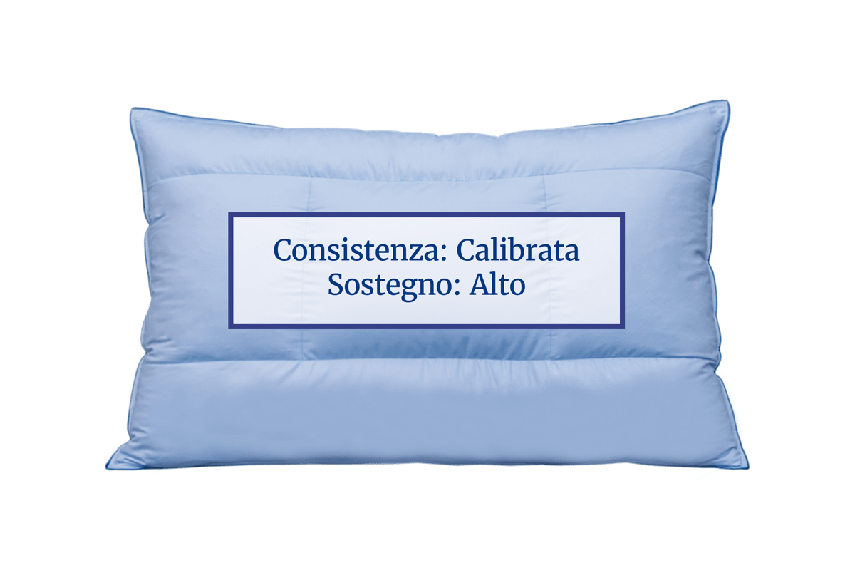 The Chiropractic Pillow