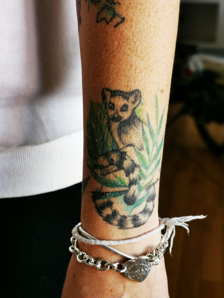 tatuaggio lemure madagascar