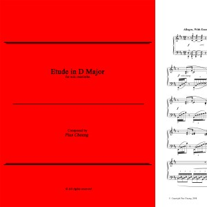 Etude in D Major (solo marimba)