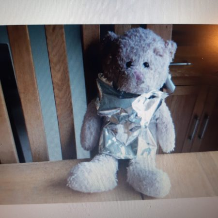 Raincoat for Teddy