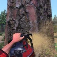 Lumberjacks-Dynasty-PC-Español