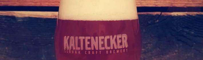 Vrchne kvasené pivá (pokračovanie)
