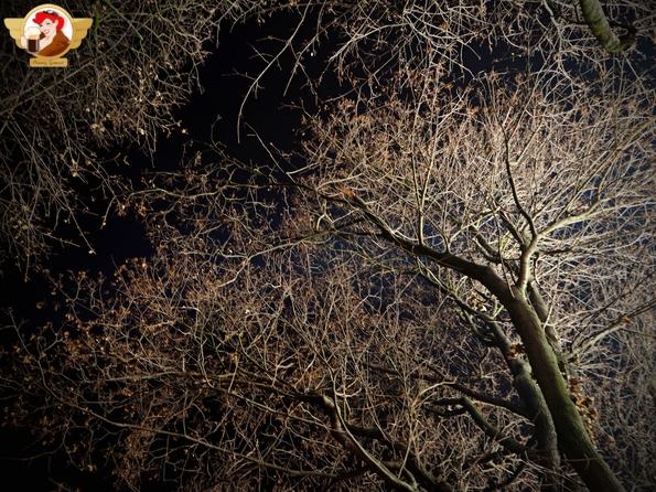 Polsat się przysłużył i oświetlając kościół św. Anny reflektorami przeciwlotniczymi ładnie siał po Plantach.