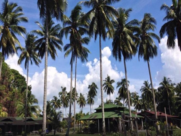 Fishing Bay Resort