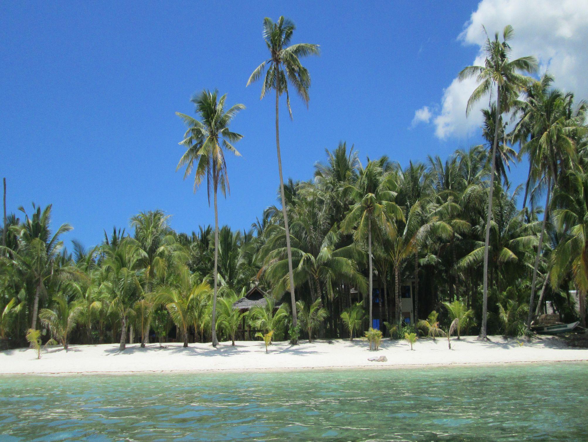 Treasure Island Beach Bungalows in Siquijor Island - Room ...