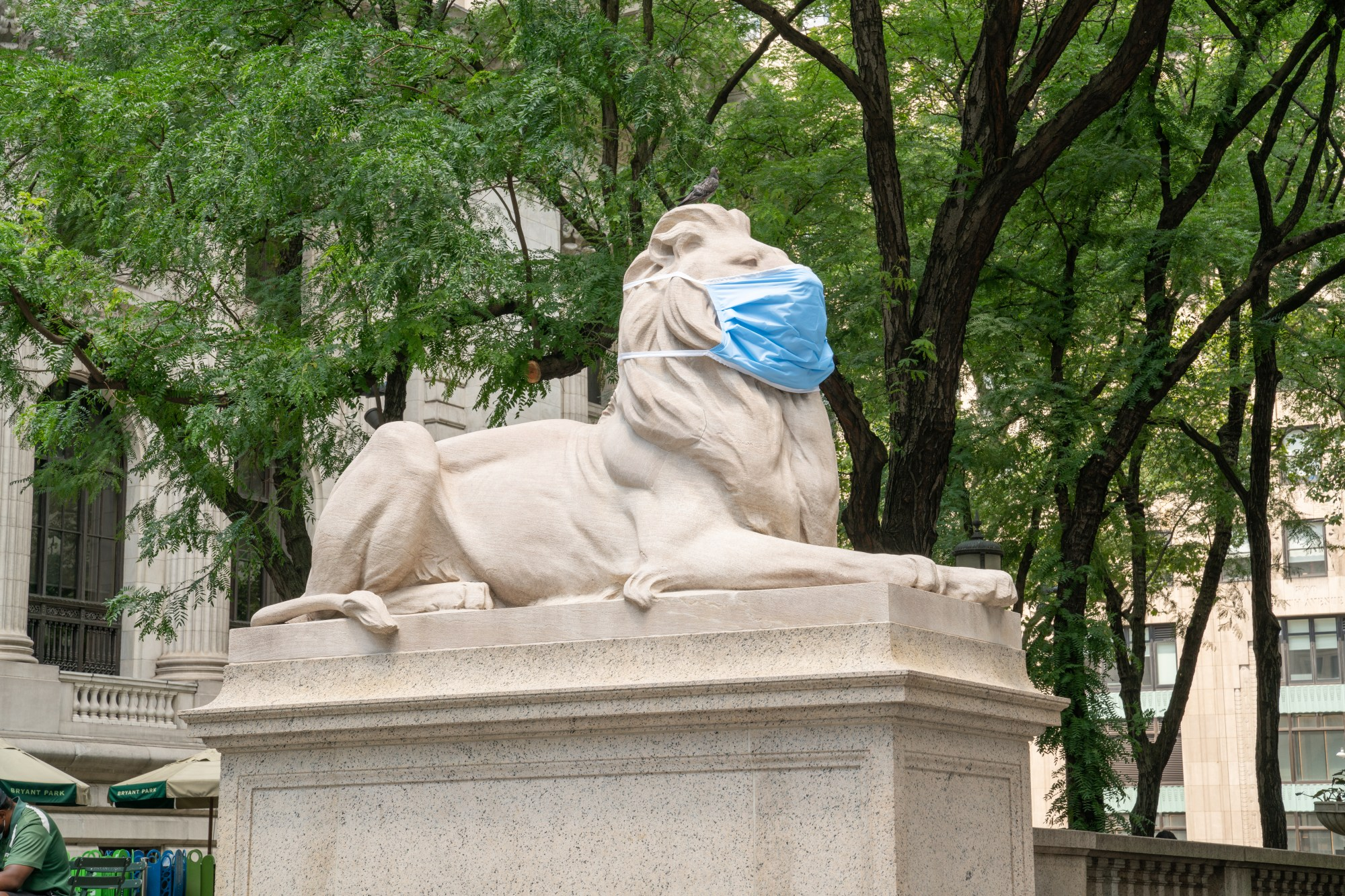 NY public library lion wears a mask to protect against covid