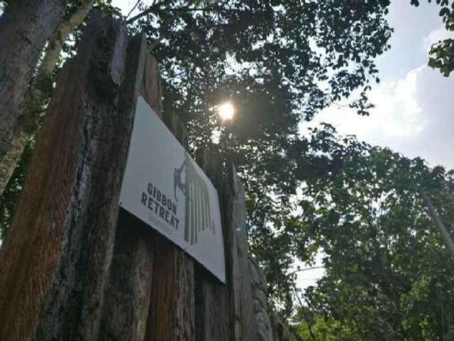 Gibbon Retreat Bentong