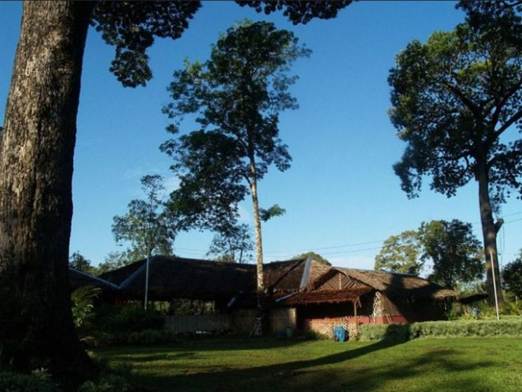 Borneo Proboscis River Lodge