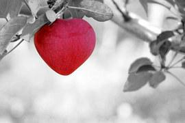 A picture of a heart shape on a tree, in regards to the post on unloving the things we once loved.