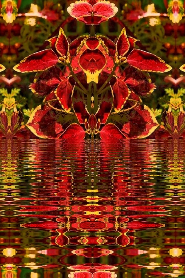 Abstract image of colorful leaves reflected in water
