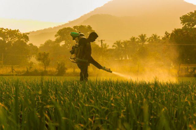 Pesticide spray in a field