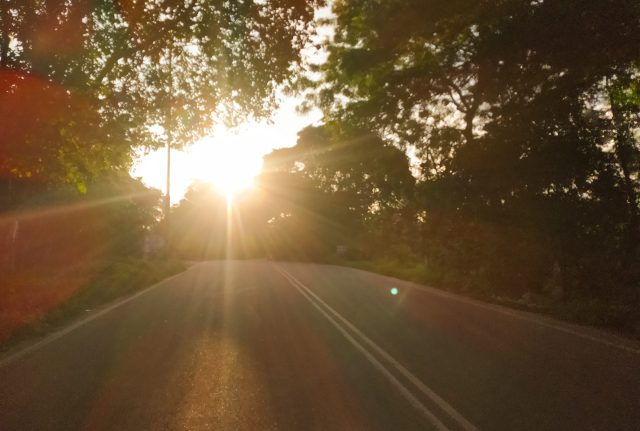 Sunlight on the road