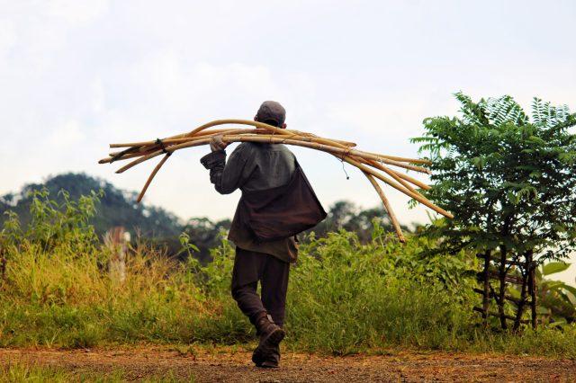 A man carrying sticks on shoulder