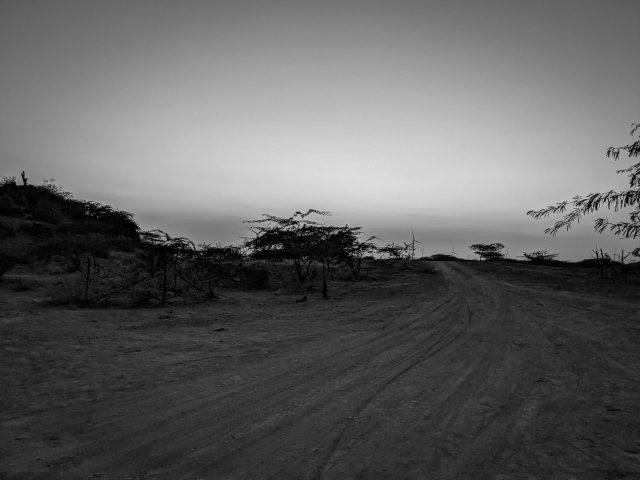 Portrait of village road