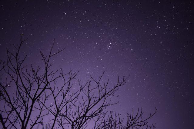 A night