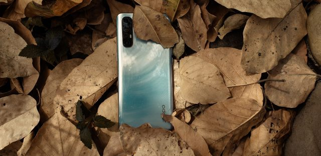 A phone fallen on dry leaves