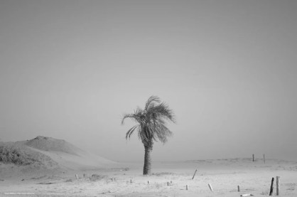 sand_view0287-1024x681