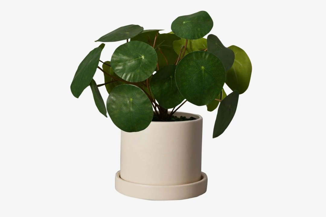 The Sill Faux Pilea Peperomioides in Small Hyde Planter