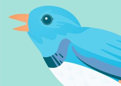 Haft2 Twitter Bird Avatar