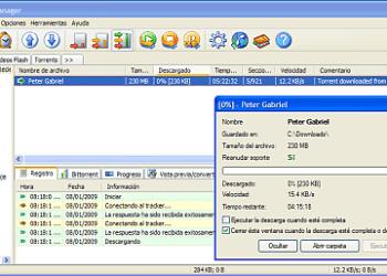 Free Download Manager - Interfaz