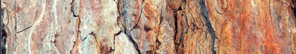harwood-textures
