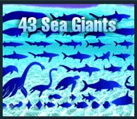 vectors-sea