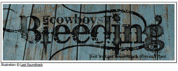 Bleeding Cowboys - free font