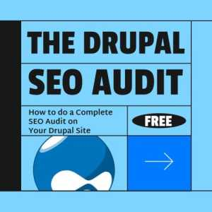 How to do a Complete SEO Audit on Your Drupal Site
