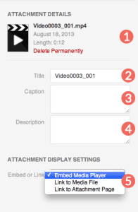 WordPress video attachment details